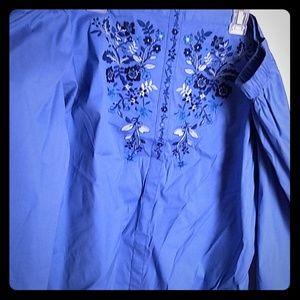 Blue blouse. Express